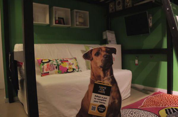 Hunde bei Ikea 8