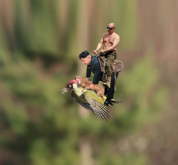 Flying Putin fliegendes Eichhörnchen auf Specht Putin testet kim Jong Un