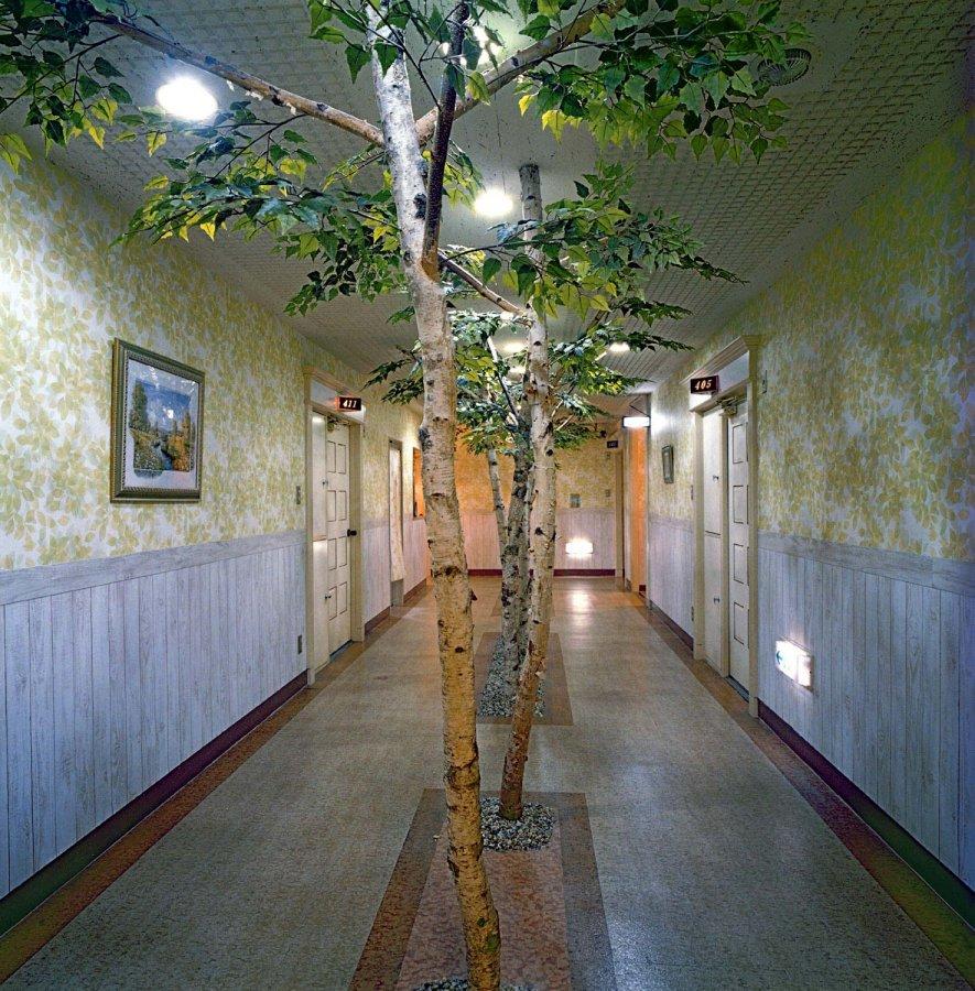 Love Hotels Bäume Misty Keasler