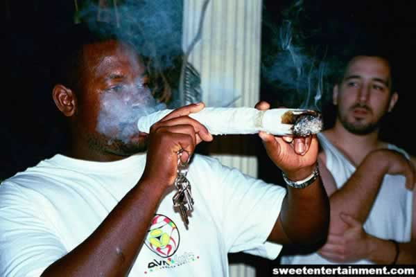 Big Joints funny marihuana Drugs