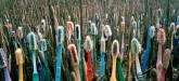 alejandro durán brotes 2014 umweltfotografie zahnbürsten plastik