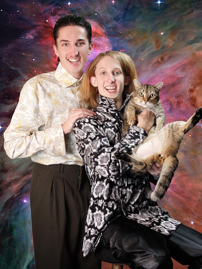 katzenliebe für männer verrückte katzenmänner