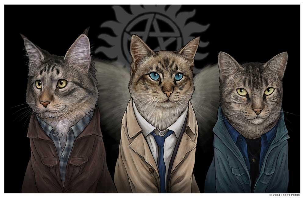 jenny parks illustrations supernatural cats