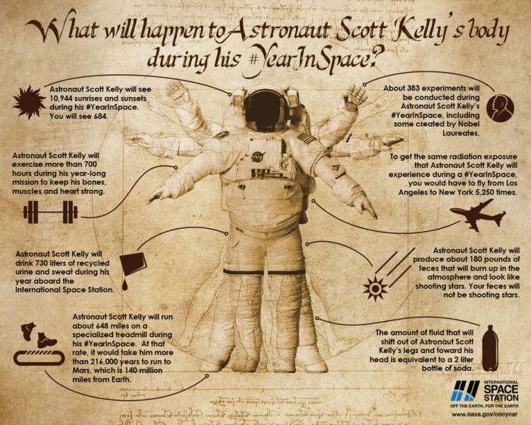one year in space scott kelly sternschnuppen sind kot infografik der nasa