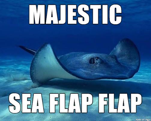 Sea Flap