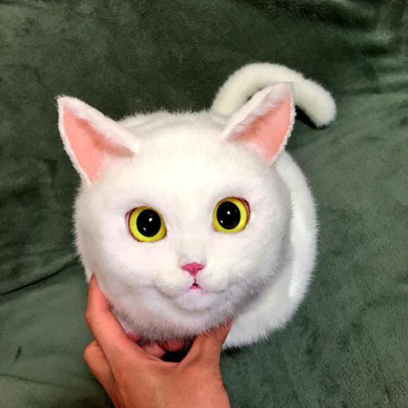 picopoco08 taschen die wie echte katzen aussehen