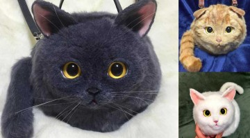katzentaschen taschen wie echte katzen