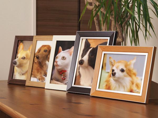 3D-Fotos