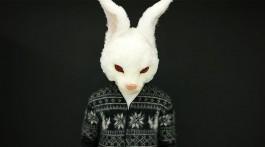 Fxxking Rabbits