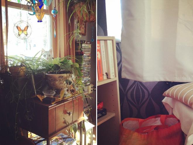 Katzenspiel wo ist die Katze
