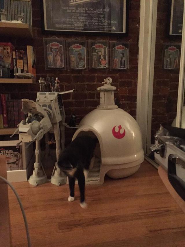Das Star Wars Katzenklo