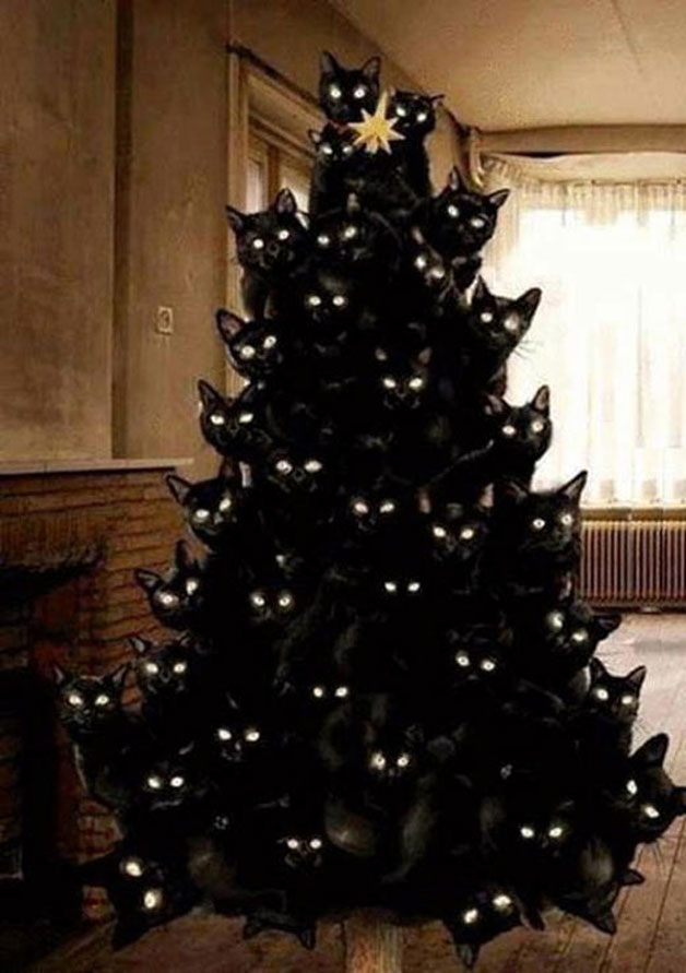 Weihnachtsbaum aus Katzen