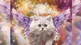 copyright nicole marie boredpanda geschenke für katzenfreunde kalender nico