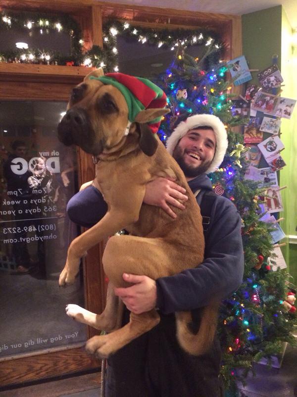 tiere und weihnachten 5