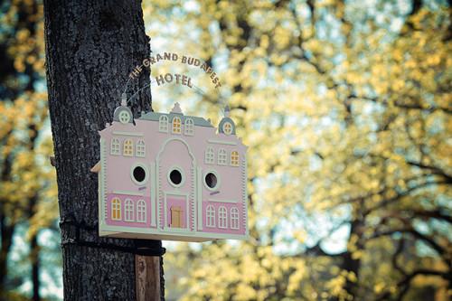 Vogelhaus mit Grand Budapest Hotel