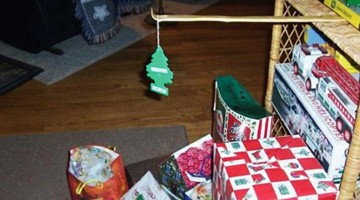 etwas andere weihnachtsbäume