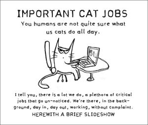 Katzenjobs