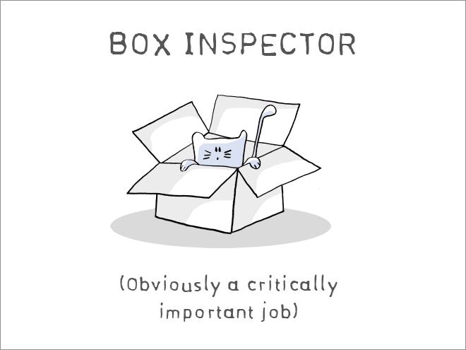 cat-job7