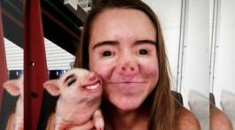 lustige face swaps auf snapchat schwein