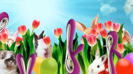 Rabbit-Vibrator SORAYA™ gewinnen Gewinnspiel Verlosung SLEAZE Ostern