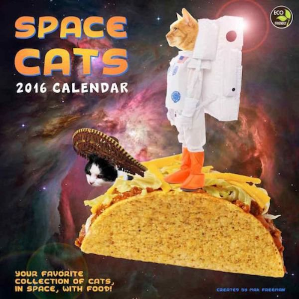 Seltsame Kalender space cats 2016