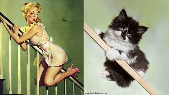 Cats-and-Art-016