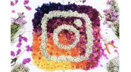 anspruchsvollere versionen des neuen instagram logos