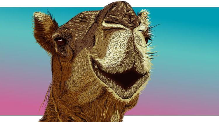 Gedicht mit Kamel