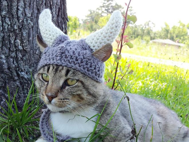 wikingerhut für katzen