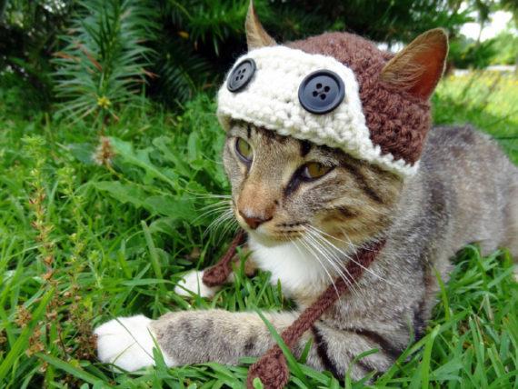 iheartneedlework häkelmützen für katzen