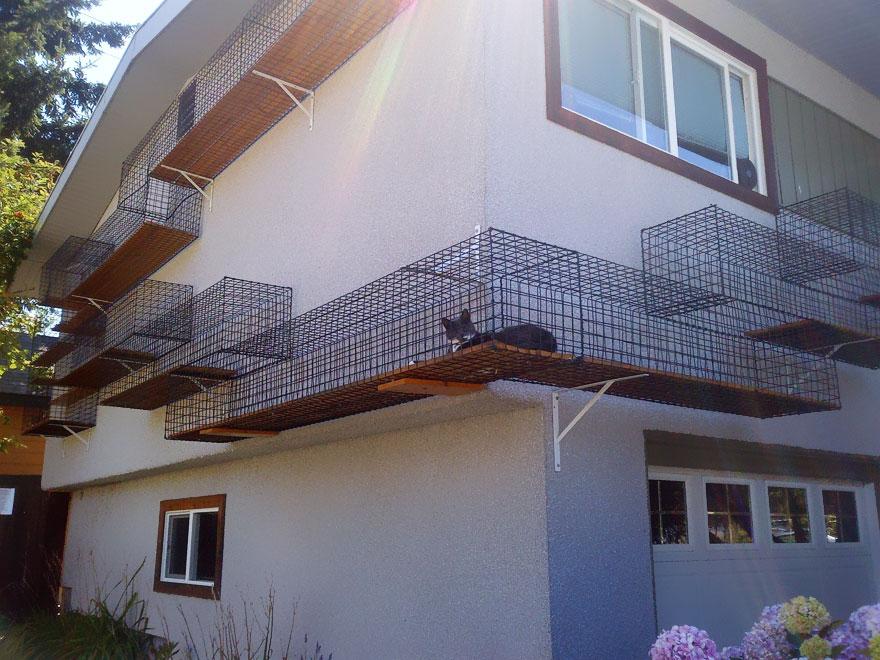 fenced-outdoor-catwalk katzenmöbel katze