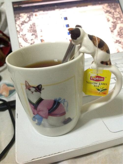 Teetasse mit Katze