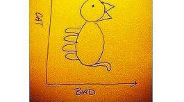 eine frage der perspektive katze vogel