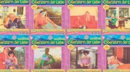 Cybersturm_der_Liebe_0800_Paradise